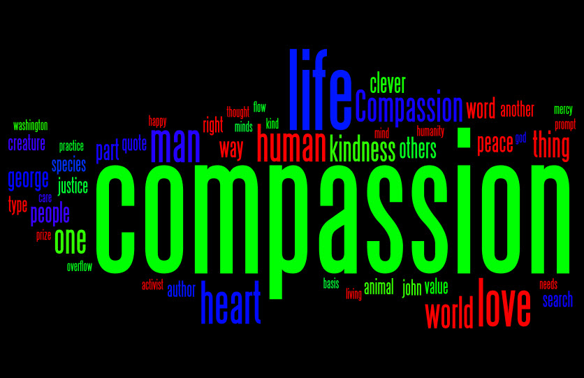 compassion Compassion [kom-pă´shun] in bioethics, a virtue combining concepts such as sympathy, empathy, fellow feeling, benevolence, care, love, and sometimes pity and mercy.